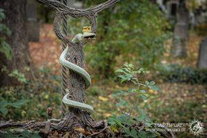 Nachrichten aus der Anderswelt - Alter Südfriedhof