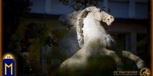 19 Ehwaz Pferde