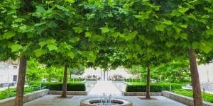 Garten Parks 4