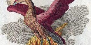 Phoenix Fabelwesen 1024x896