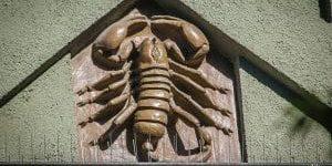 Kreuzviertel Skorpion 10